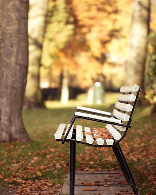 6911712-park-bench-autumn